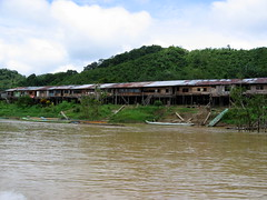 An Iban Longhouse