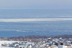 Sea of Okhotsk /  (yanoks48) Tags: sea japan hokkaido    abashiri   driftice  seaofokhotsk