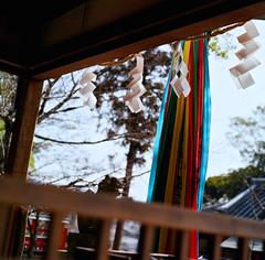 (aozora.umikaze) Tags: japan nara uso aozora honto sokoni arumono