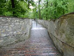 Follow the brick road... (m_artijn) Tags: road brick forest walking prague path hill cz petrin