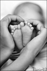 Petits pieds. (nanie49) Tags: famille familia family famiglia france francia bb baby nouveaun newborn reciennacido nanie49 nikon d750 portrait retrato pieds pies feet nb bn