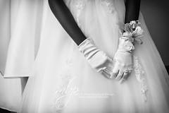 DSTJAB2016w-823 (embrownny) Tags: girls girl africanamerican cotillion debutante whitegloves