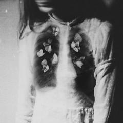 Cabinet of Souls (laura makabresku) Tags: laura makabresku photography dark darkness obscure soul mystic butterflies moths girl black artlibres artlibrewinner