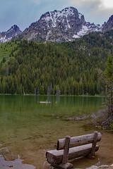 Missing Person (Plain Adventure) Tags: mountains wyoming grandtetonnationalpark