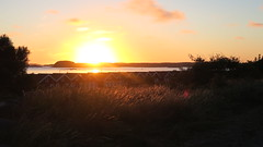 """The Best Coast"" (mpersson60) Tags: sverige sweden vstkusten westcoast solnedgng sunset hav sea"
