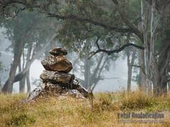 Cathedral Rock National Park (__db_) Tags: stone naturpark cathedralrocknationalpark natural regen newsouthwales turm rainforest steine aus rain natur australien armidale au