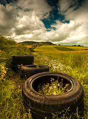 Tyred (RonnieLMills) Tags: tired tyre goodyear eagle f1 abandoned barley field moate road scrabo tower rubber daisies countryside landscape