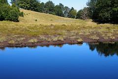tszem / lake (debreczeniemoke) Tags: nyr summer lp bog tzeglp muskeg tulchendroaiei t pond kk blue tpart lakeside gutinhegysg gutinmountains olympusem5