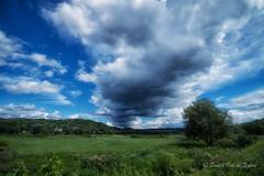 Le Grand Soupir (Sous l'Oeil de Sylvie) Tags: campagne rural ruralit champs fields arbre tree ciel sky nuages clouds bleu blue sousloeildesylvie pentax ks2 sigma1020mm aot august 2016 beauceville beauce qubec