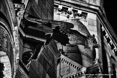 Chimera Gargoyle (Armin Hage) Tags: chimera gargoyle grotesque frenchgothic gothic montmartre sacrcur paris france arminhage