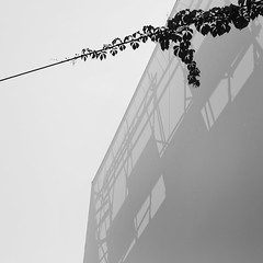 Covered scaffold, Milan (stumayhew) Tags: italy milan scaffold shadows mono blackandwhite minimalist canon 6d