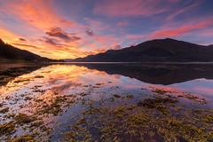 Loch Duich Sunset. (Gordie Broon.) Tags: lochduich ratagan shielbridge sunset alba seascape sealoch reflections sgurranairgid scotland schottland heuvels hills collines landscape paysage lac seestuck paysagemarin caledonia letterfearn inverinate macrae ecosse scottishhighlands escocia scottishwesternhighlands invernessshire scozia szkocja gordiebroonphotography hugeln colinas paesaggio seaweed clouds skyreflections eileandonan august summer 2016 mountains corbett tranquil invershiel leachachan scenery vista canon5dmklll scenic canon1635f4l picture geotagged sgurraoide kintail