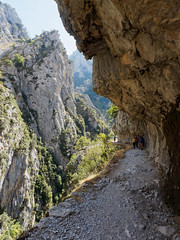 Deep in the Cares gorge (Jon Sketchley) Tags: spain espaa cares gorge picosdeeuropa rutadecares ravine canyon precipice cliff rock limestone