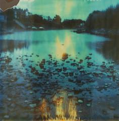 Autumn Roid Week (The Gentleman Amateur) Tags: polaroid sx70 timezero expired film analog analogue london england uk llr2 roidweek polaroidweek