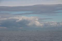 blueish (Jensje) Tags: netherlands niederlande ijsselmeer klipperrace 2016 blue windmolens windmills energye wind sunshine sailing zeilen segeln classic broedertrouw