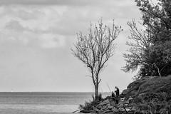 Die Angler -- the angler (k-w-a) Tags: angler landschaft ufer bw blackwhite landscape schwarzweiss seaside street freizeit hobby angeln fishing