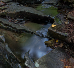 Proterozoic Dry Hill Gneiss.  Leverett, MA. (koperajoe) Tags: stone hdr waterfall geology water stream autumn rock strata leaf longexposure
