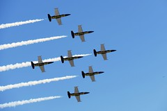 Photo Pass (Paul Moons) Tags: miramar air show breitling jet team l39 albatross