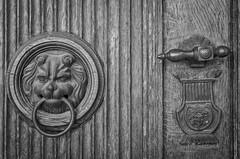 knock knock (Tomsch) Tags: blackandwhite blackwhite bw schwarzweiss schwarzweis door tr tor geentrance eingang lion lw austria upperaustria sterreich obersterreich o ebelsberg schloss castle schlossebelsberg linz