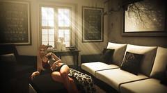 Enjoying the quiet moment (Alexa M.) Tags: envogue {lefilecasse}lucid geeksnerds lessucreriesdefairy blackbantam dog pug pets animals kotic enmeshedcreations dreamscapesartgallery floorplan dustbunny secondlife indoors home furniture livingroom twe12veevent