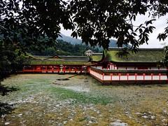 (uucoco) Tags: miyajima itsukushima shrine japan hiroshima green red white