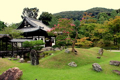 Beautiful garden at Ryoan-ji Temple (nobettertimethannow) Tags: japan kyoto prefectcure canon photos photography garden house green grass rocks trees ryoanji