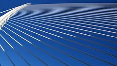 The Harp: Light and Shadow (gerard eder) Tags: world travel reise viajes architecture architektur arquitectura europa europe espaa valencia ciudaddelasartesyciencias stadtderknsteundwissenschaften bridges brcken puentes lassutdelorbridge calatrava santiagocalatrava