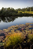 Pri Lovrenških (PicsbyGrega) Tags: pohorje slovenia slovenija jezera sigma1750mmf28exdcos canoneos60d lovrenškajezera rogla štajerska hiking lake forest