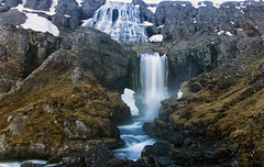 wild Westfjords waterways (the Thundering Dynjandi) (lunaryuna) Tags: iceland westfjords westiceland landscape mountain rockface waterfalls dynjandiwaterfall geologicalformations wilderness nature beauty lunaryuna thethunderingone