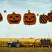 161015-harvest-tractor-corn-pumpkins.jpg