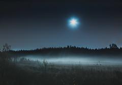 Moonshine (Mika Tuomela) Tags: moon moonlight fog mist cold field night nightsky nightscenery nighttime scenery landscape finland nikon d7100 sigma