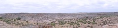 Vast: Spot the animals (Englepip) Tags: mapumgubwe valley drought landscape panorama dry elephant impala fromabove cloudy