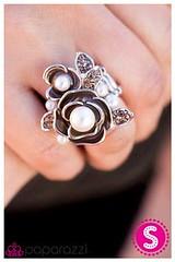 291_ring-brownkit1march-box01