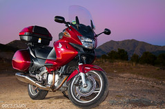Honda Deauville (DOCESMAN) Tags: bike honda motorcycle motos deauville motorrad motorcykel moottoripyörä motocykel motorkerékpár nt700v docesman mototsikl danidoces