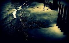 ripple of velvet (BedBrochFlick) Tags: strange thames river tide shore