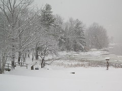 IMG_1003.JPG (drownedvalley) Tags: winter snow unitedstates newhampshire blizzard dover eyefi