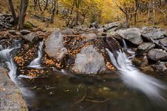 Stara river (Ivaylo Madzharov - Pictures from Bulgaria) Tags: autumn mountain nature river bulgaria balkan