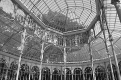 Palacio de Cristal, Madrid (Aitana Aliaga) Tags: madrid naturaleza byn blancoynegro edificios monumento cristal palacio palaciodecristal nikond3200 elretiro parquedeelretiro claroscuros