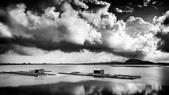 Kolavai Lake (Roehan Rengadurai) Tags: white lake fish black monochrome train landscape fishing shot district farming madras chennai prawn kanchipuram chengalpet kolavai roehan rengadurai