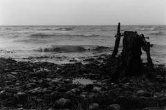 Relentless Force (Heibergl) Tags: ocean sea white black cold fall love film analog photography waves walk story shortstory brokenheart breakup reporting heartbroken sønderborg washedaway