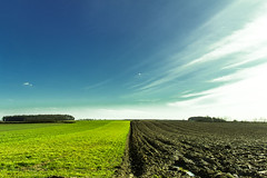 split view (eddykennes) Tags: light sky brown sun sunlight green colors field clouds canon landscape sand view mud fields