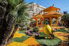 FTE DU CITRON - MENTON (daumy) Tags: sculpture orange france jaune lemon jardin char citron visite tourisme menton dcor gardin provencealpesctedazur