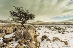 Spindle (mattwalkerncl) Tags: winter snow canon landscape eos yorkshire nd grad 1740 6d 7022