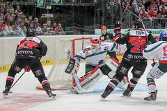 """DEL15 Kšlner Haie vs. Augsburg Panthers • <a style=""""font-size:0.8em;"""" href=""""http://www.flickr.com/photos/64442770@N03/16302269025/"""" target=""""_blank"""">View on Flickr</a>"""