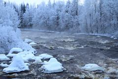 Kuusaa rapids_2015_01_22_0021 (FarmerJohnn) Tags: winter cold fog canon suomi finland haze stream frost january rapids 7d talvi vesi tammikuu glacial laukaa usva sumu koski kylmä virta pakkanen kuura äänekoski kapeenkoski kuusaankoski hyinen juhanianttonen ef1635l28iiusm