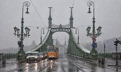 Tarde de nieve en Budapest (pimontes) Tags: puente nieve budapest hungría tranvía pimontes