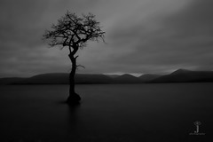 Amanda Fraser 4 (bobtab71) Tags: amanda cold west tree beach water way photography bay scotland still alone slow branches hill peaceful hills shutter loch fraser popular lomond rule thirds weirs conic higland drymen balmaha millarochy g630jq