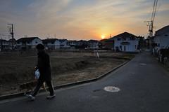 2011/01/24 07:10 Fujisawa (Masayo Nabeshima) Tags: morning sunlight nikon d3