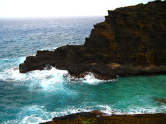 If I Can Turn Back Time_66 (Jimmy - Home now) Tags: daddy happy hawaii dad waikiki oahu happiness maui honolulu hilo waikikibeach kona