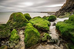 Moelfre, Anglesey (Nic Taylor Photography) Tags: beach wales sony sigma pebblebeach algae soe anglesey northwales weddingphotographer sigma1020mm portraitphotographer moelfre beautifulearth 30faves 50faves 10faves 20faves 40faves 60faves 70faves sonyalpha 80faves eventsphotographer unlimitedphotos photographermerseyside photographersthelens portraitphotographersthelens sonya77mkii sonya77ii sonyslta77ii